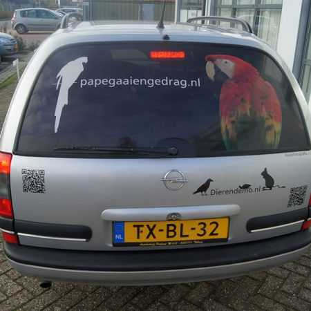 Papegaaiengedrag.nl Autobelettering